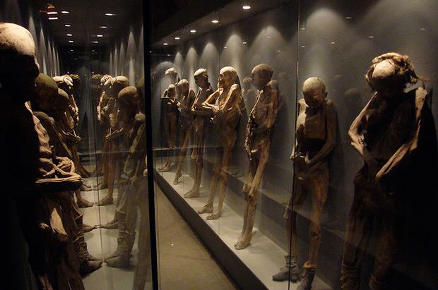 Muumioita museossa